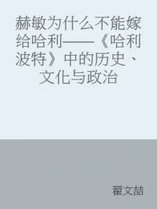 《赫敏为什么不能嫁给哈利:<哈利波特>中的历史、文化与政治》翟文喆(作者)-epub+azw3