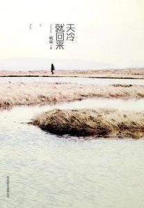 《天冷就回来》姚瑶(作者)-epub+mobi+azw3