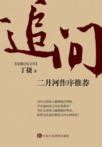 《追问(媲美人民的名义的现实题材反腐作品)》丁捷(作者)-epub+mobi+azw3