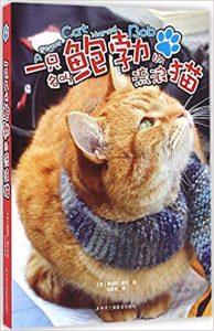 《一只名叫鲍勃的流浪猫》詹姆斯・鲍文-epub+mobi